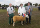 The 2014 Tenbury Countryside Show is a success even after battling with Rain!