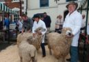 "Shipston's ""Wooly Weekend"" a great Success"