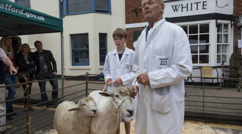 Wooly Excitement at Shipston Wool Fair